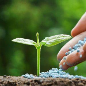 metso na industria de fertilizantes 3